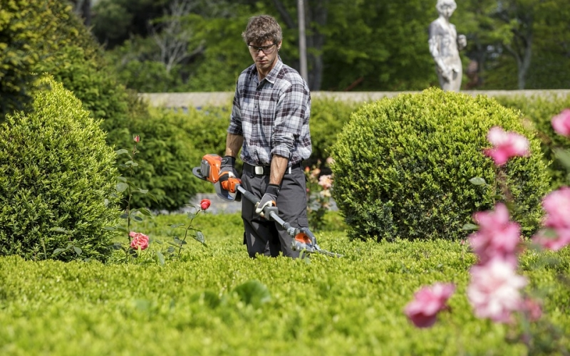 Buenas noticias para más de 300 trabajadores de jardinería de La Rioja