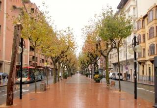 AvenidaPaz2