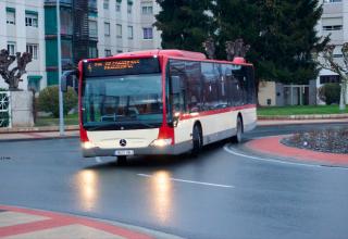 Autobús urbano, Logroño